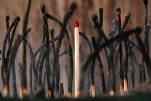 Fire Wood - Jay Warnes