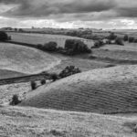Rolling Countryside - Mark Tatchell