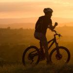 Ham Hill Mountain Biker - Malcolm Balmer