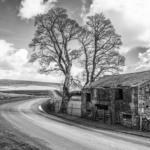 Derelict-Adrian Sydenham
