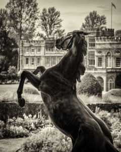 Rearing Horse, Forde Abbey