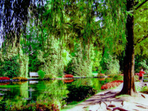 Segerta Gardens, just south of Lake Garda - Trevor