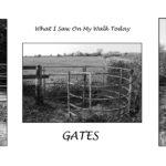 Gates-Mike Nicholls