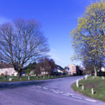 Stoford Village Green -Ally