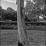Mike N - Pageant Park Tree Carving