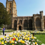 Ally-St John's with Tulips