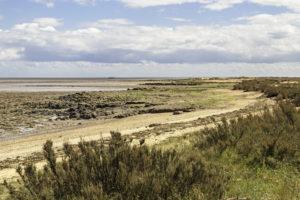 Coast view Essex