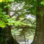 Peter - Sherborne Castle Lake View