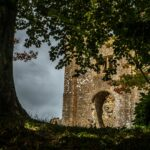 Pam - Arboreal Window to the Old Castle