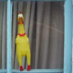 Chris Edgecombe - Plastic Chicken