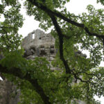 Gill - Nunney Castle