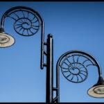 Anders - Ammonite Lights