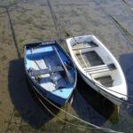 David H - Two Boats